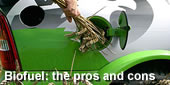 Biofuels saving our Environment