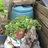 Composting Tips and Tricks