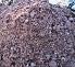 Mushroom and Manure Fertilizer
