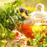 Eco Organic Tea and Leaf Tea for your Health