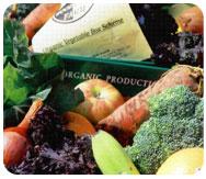 Woodlands Organic Produce