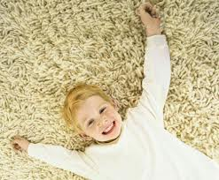 Your Environmentally Friendly Carpet Cleaners